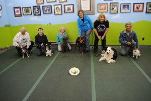 Senior Dog Party Oct 2018
