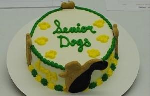 Senior Dogs Cake 2019